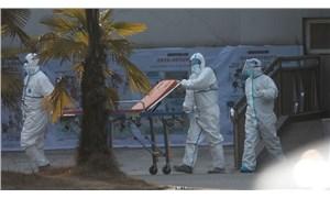 Çin'in Wuhan şehri, virüs nedeniyle karantinaya alındı