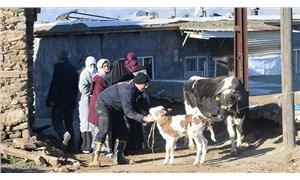 Tarım ve Orman Bakanlığı, depremde hayvanlarını kaybeden yurttaşlara destek olacak