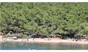 Ayvalık Tabiat Parkı da ranta açılıyor