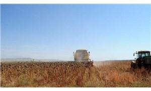 CHP'li Bakan: Bakanlık gıda analizlerinin sonuçlarını gizliyor