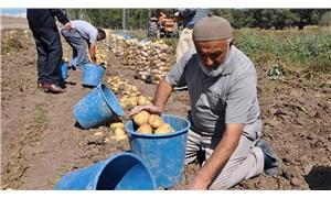 Çiftçi çiftçi olalı  böyle zulüm görmedi