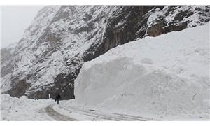 Meteoroloji'den Doğu Anadolu için çığ uyarısı