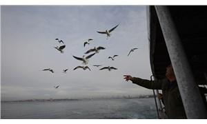 İstanbul'da en yüksek zam Adalar Hattı'na yapıldı
