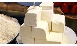 Sahte peynire dikkat: Kuru madde oranına bakılmalı
