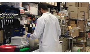 Koronavirüsün fotoğrafları yayımlandı