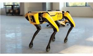 Robot Spot, rafineride göreve başlıyor