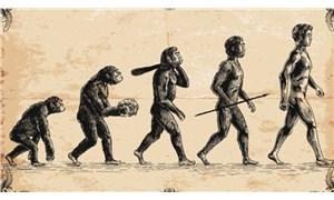 MEB evrimden bahseden ifadeleri eğitim takviminden çıkardı