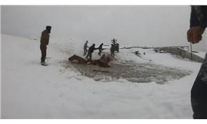 Rusya'da 7 at buz kırılınca suya düştü
