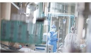 Almanya'da kornavirüs tespit edilen kişi sayısı 17'ye yükseldi