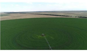 Hazineye ait tarım arazilerinden alınacak kiralar ertelendi