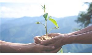 Ekolojik yaşam için fırsat doğdu