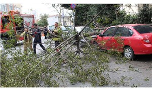 Mecidiyeköy'de şiddetli rüzgar sebebiyle ağaç otomobilin üzerine devirdi