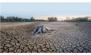 60 yılda Van Gölü'nün üç katı kadar göl kurudu
