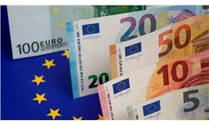 Aylık en yüksek reel getiri Euro'da