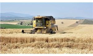 Çiftçi topraktan çekiliyor, tehlike çanları çalıyor: Tarımda acilen üretim seferberliği ilan edilmeli