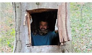 Koronavirüsten kaçmak için ağaç kovuğuna giren adama soruşturma