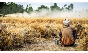 Sudan ile Dünya Gıda Programı arasında buğday alım anlaşması yapıldı