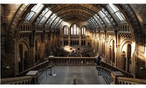 """Salgın döneminde """"sanal müze""""lere ziyaretçi akını: 800 bini geçti"""