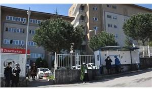 Ambulansı takip edip hastane kapısında sahibini bekleyen köpek kayboldu
