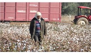 Pamuk üreticisi çözüm bekliyor