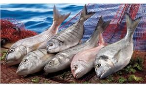 Önemli olan bolca balık tüketmek