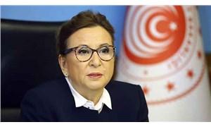Ticaret Bakanı Pekcan: Covid-19 semptomu göstermeyen Türk şoförler tekrar yurt dışına çıkabilecek