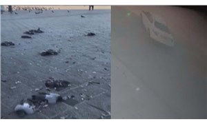 Eminönü Meydanı'nda tur atan bir sürücü onlarca güvercini öldürdü