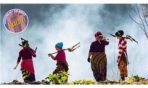 Kırsalda yaşayan kadınlar anlatıyor: Yaşamak için üretmek zorundayız