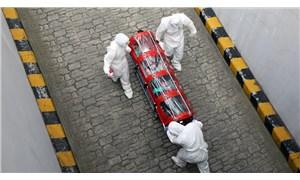 16 Mayıs - Ülke ülke koronavirüs salgınında son durum | Can kaybı 310 bini aştı