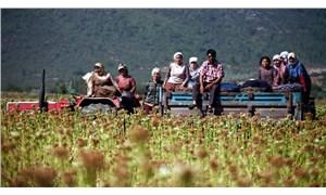 Çiftçi borçlu, tarım çöküyor
