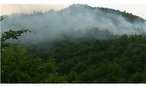Ordu'daki altın madeninin yanında orman yangını: Sabotaj olabilir