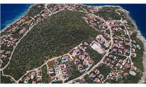 Antalya'da yangın sonrası çıkan manzara dikkat çekti