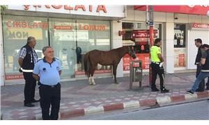At sokağa çıkma yasağında polis denetimine takıldı