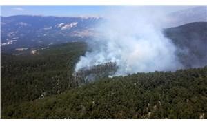 Demre'deki yangında 100 dönüm orman küle döndü