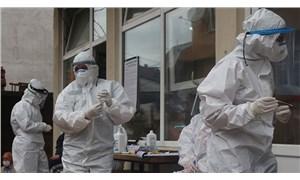 Rize'ye gelen çay üreticilerinin bazılarında koronavirüs tespit edildi