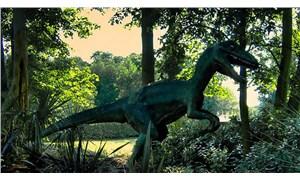 Yeni bir araştırma: Dinozorları dünyadan silen gök taşı nasıl oldu da böyle bir 'kusursuz fırtına'ya sebep oldu?
