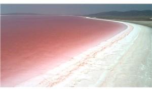 Tuz Gölü pembeye döndü
