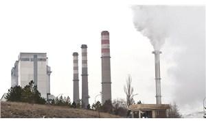 Denizli'de termik santrali durduran köyün muhtarı: Havamıza, suyumuza dokunmasınlar