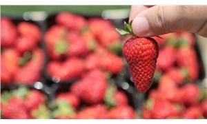 Mayısta en fazla çileğin fiyatı arttı, sivri biber yarı yarıya düştü