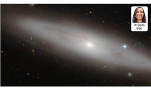 Evrende dönen karanlık işler-1