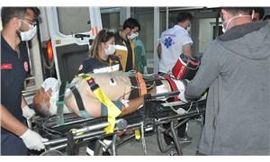 Hakkari'de bir kişi ayı saldırısına uğradı