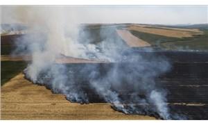 ÇMO'dan uyarı: Anız yakmak topraktaki verimi düşürür