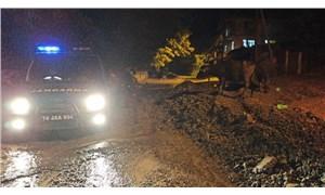 Bartın'da sele kapılan 6 büyükbaş hayvan öldü