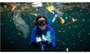 Şahika Ercümen: Resmen plastik atık dalışı yaptım