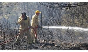 İzmir'deki orman yangınına bir gözaltı
