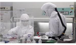 Koronavirüs aşısı denemelerini hızlandırmak için tartışılan yöntem: Human Challenge