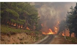 CHP'li Ali Şeker: Türkiye'de son on yılda her gün 7 orman yangını çıkmış