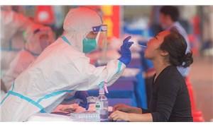 DSÖ, koronavirüsün kaynağını araştırmak üzere Çin'e ekip gönderdi