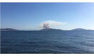 Heybeliada'da orman yangını: 3 şüpheli gözaltında