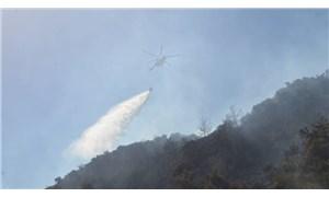 Aydın'da orman yangını: 10 dekar alan yandı